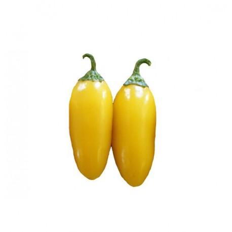 Jalapeno 25 semi