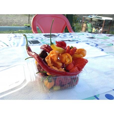 Mix peperoncini freschi piccantezza estrema