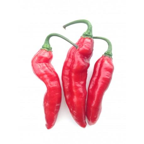 Pimenta de Neyde Red