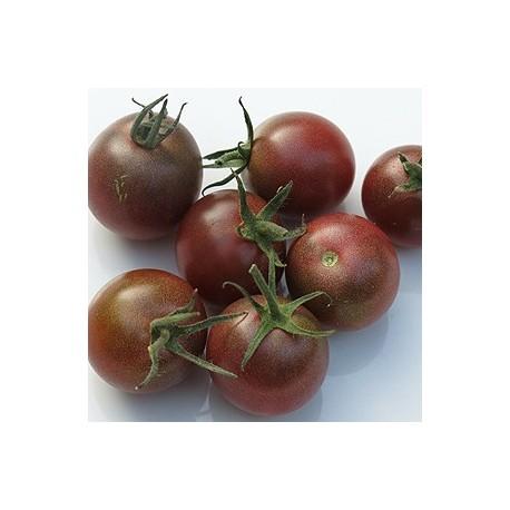 Semi pomodoro ciliegino nero