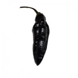 Semi Pimenta da Neyde