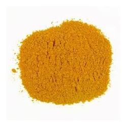 Cojote zan yellow in polvere