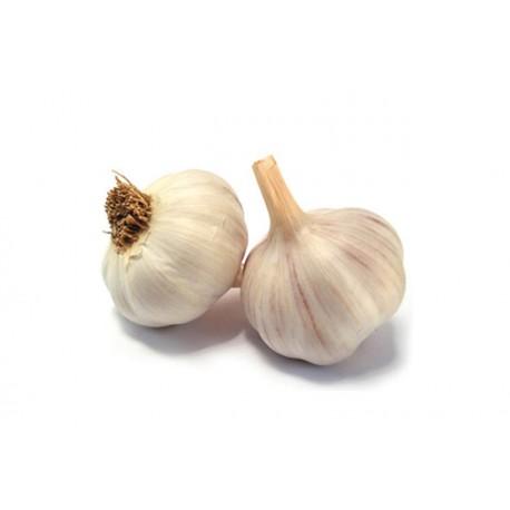 Semi aglio bianco