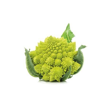 Semi di broccolo romano cornelio