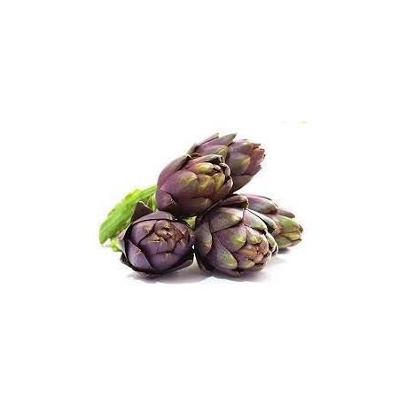 Semi di carciofo violetto