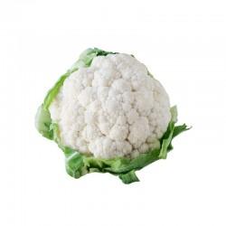 Semi di cavolfiore bianco memphis