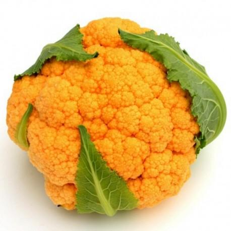 Semi di cavolfiore arancione