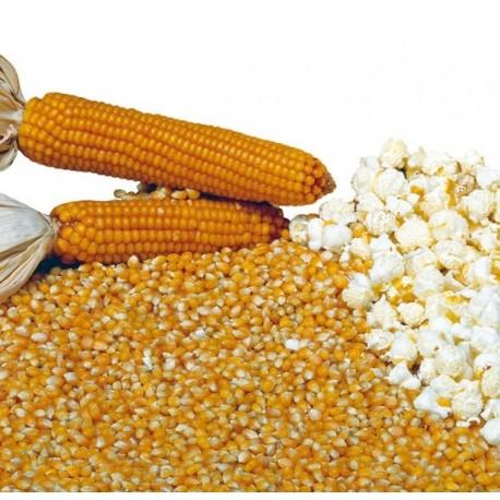 Semi Mais Popcorn