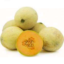 Semi Melone Sugar
