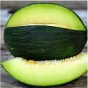 Semi Melone Verde Inverno Tendral