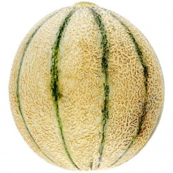 Semi Melone Retato Pepito