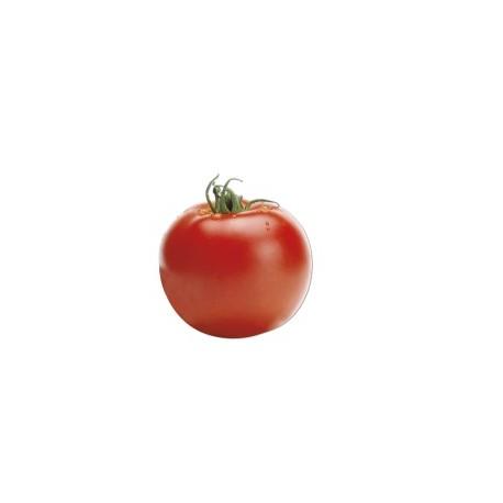 """Semi di pomodoro tondo """"Big Red"""""""