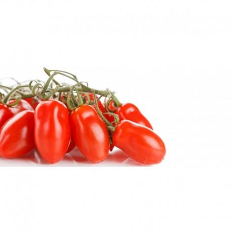 Semi di pomodoro San Marzano Mediterraneo