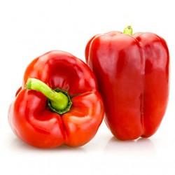 Semi Peperone Allungato Rosso Favilla