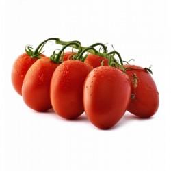 Semi di pomodoro ciliegino tipo piccadilly