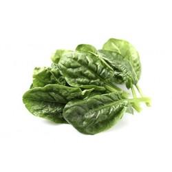 Semi spinacio