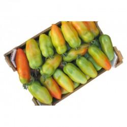Semi di pomodoro San Marzano big Tiren