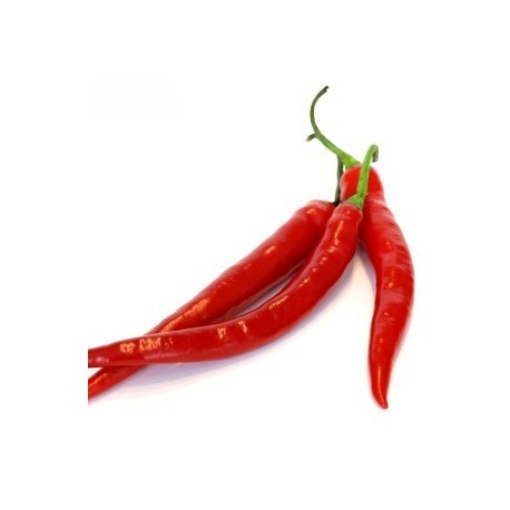 Peperoncini Carolina Cayenne secchi 15 gr