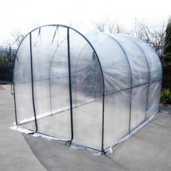 Serra per peperoncino orto e piante