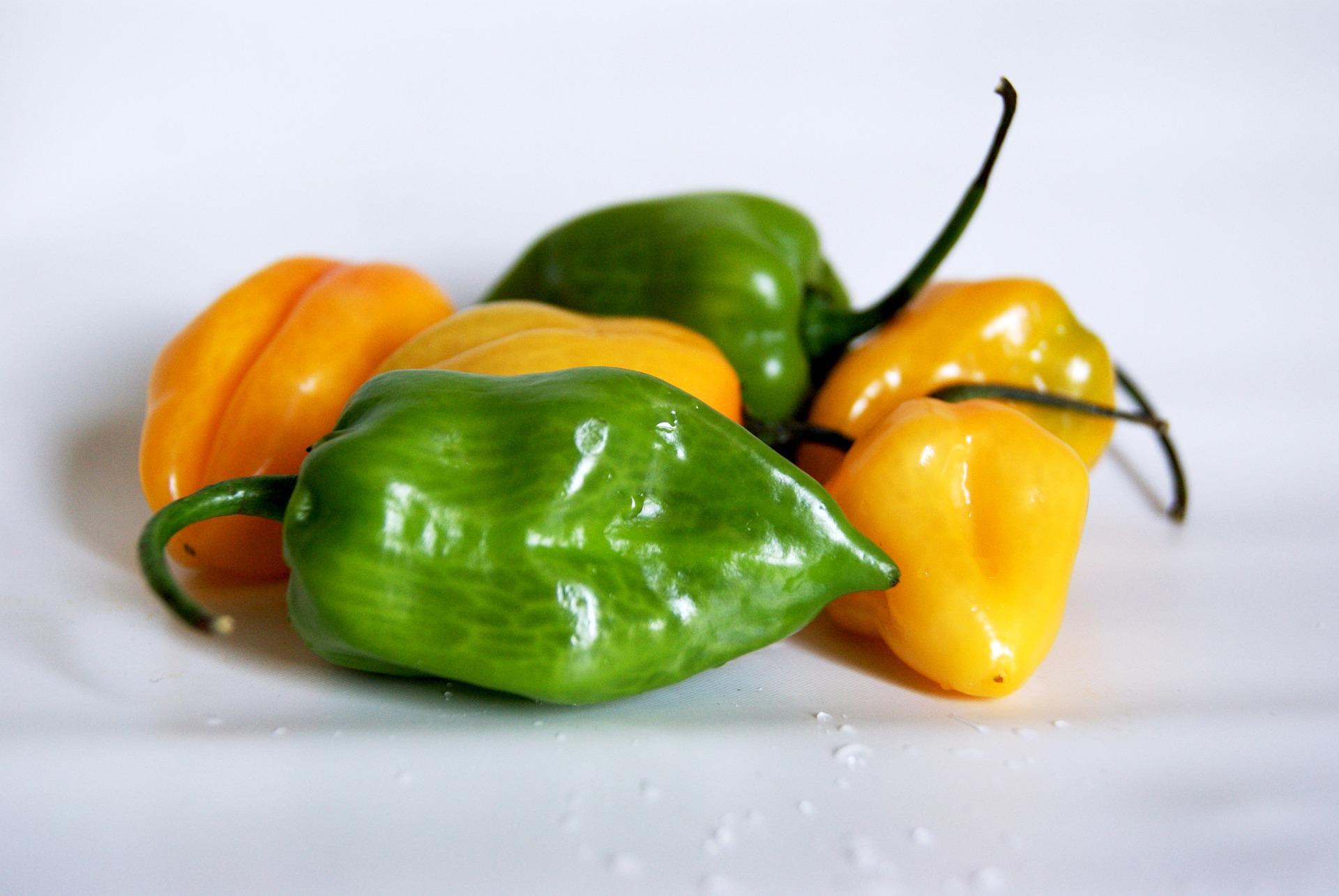 Peperoncini Habanero